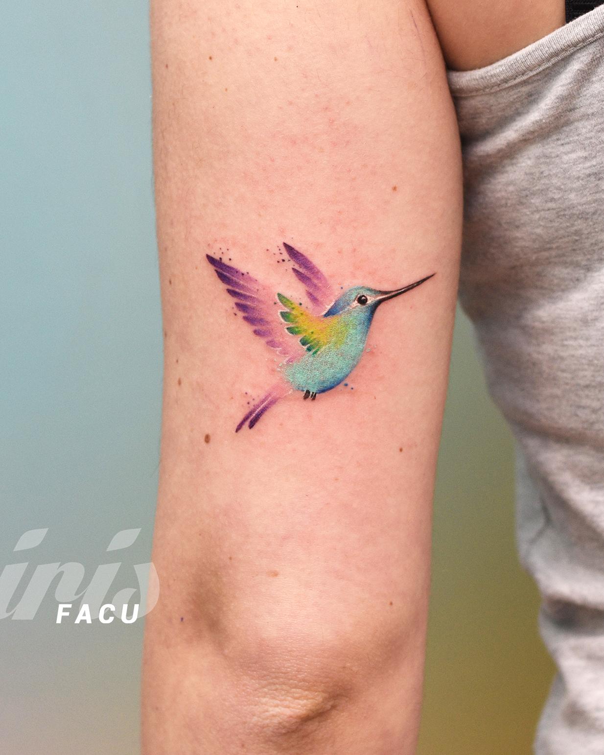 FACU colibriris