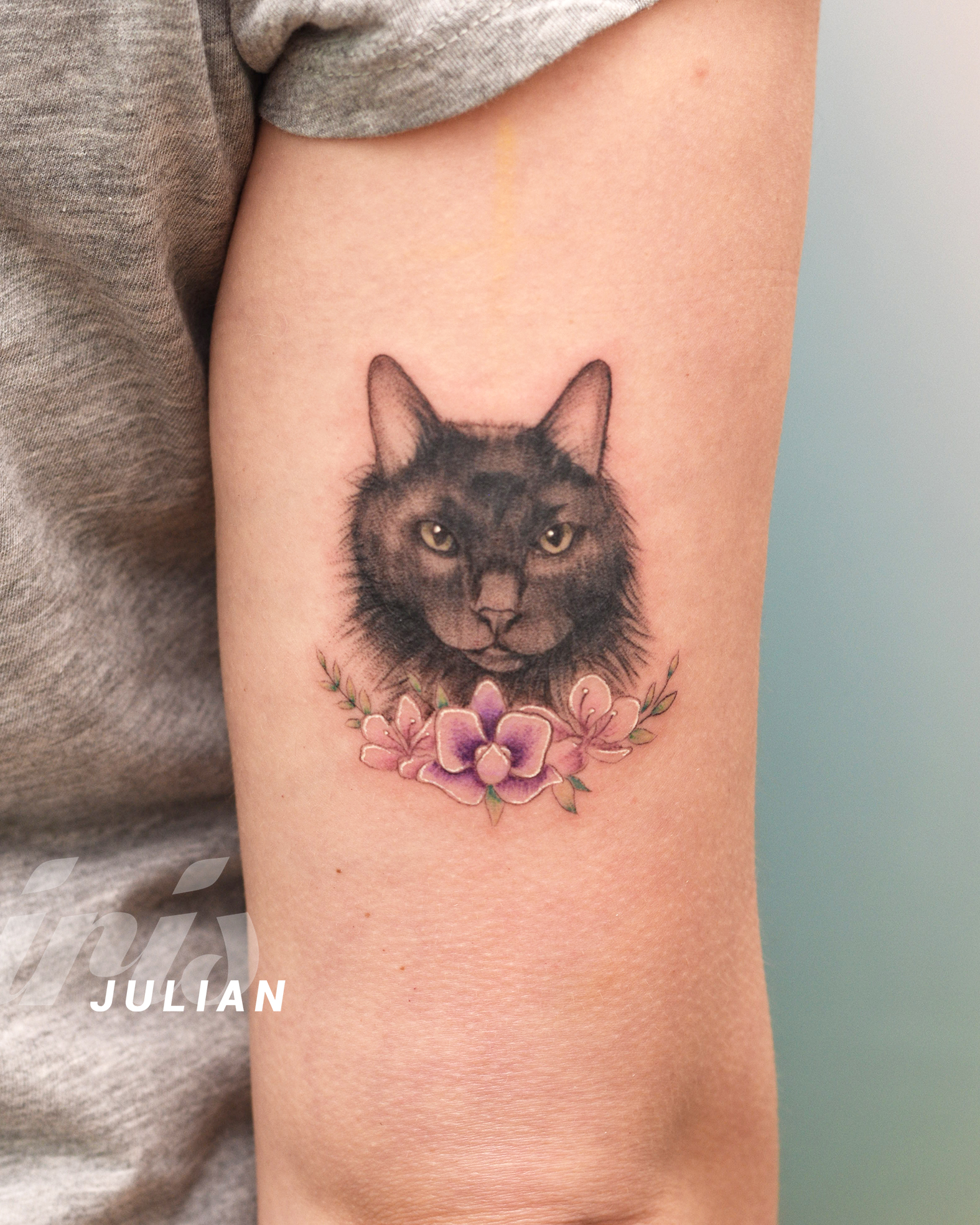 JULIAN par de gatos2